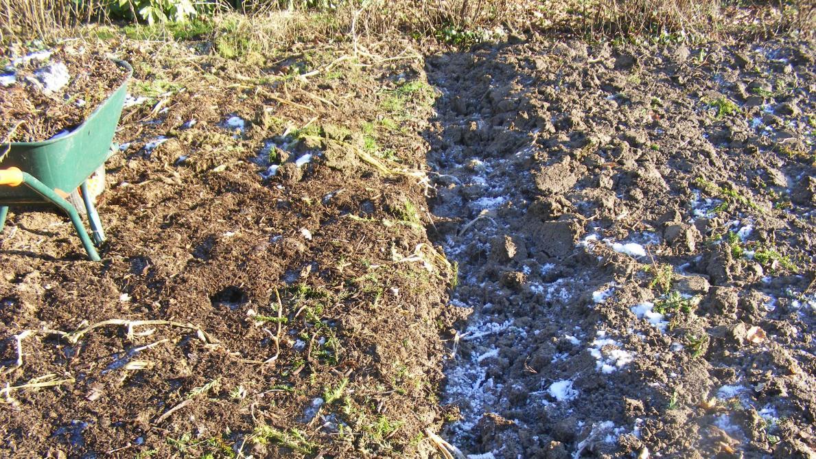 Sol Argileux Avantages Inconvénients connaître son type de sol, un premier pas vers un potager